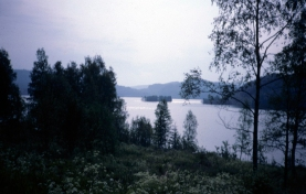 img_38